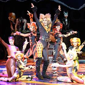 『キャッツ』福岡公演開幕に向けて ――総稽古が行われました!劇団四季ニュース