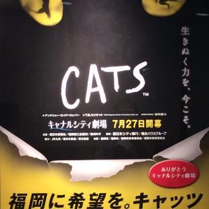 劇団四季『CATs』福岡公演初日をキャナルシティ劇場で観る !