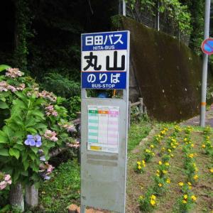 大分県日田市 『観音の滝』