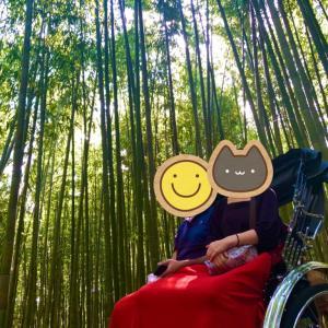 【京都嵐山インスタ映え】Gotoトラベル地域共通クーポン使って人力車に乗ってみた【人力車えびす屋】