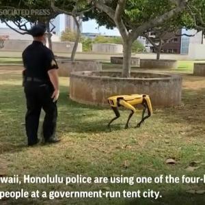 まるで映画のようなハワイの警察新兵器