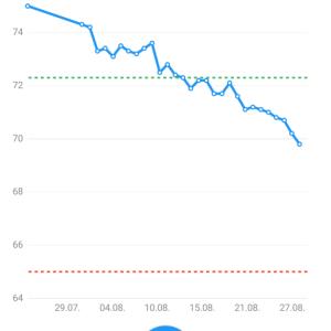ダイエット1ヵ月報告 4キロ減量成功