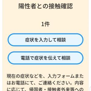 接触確認アプリ『COCOA』