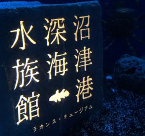 深海魚水族館(静岡県・沼津)に行ってみた。