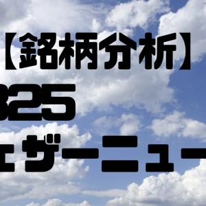 【銘柄分析】4825ウェザーニューズ