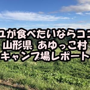 アユが食べたいならココ!山形県 あゆっこ村 キャンプ場レポート