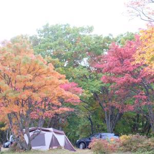 低料金な上に大満足!広大な敷地で紅葉キャンプ in 蔵王坊平国設野営場