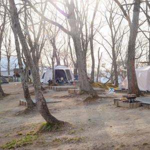 まっ昼間からビールとキャンプ飯尽くし! in 天童高原キャンプ場