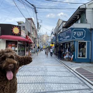 リンツの横須賀ぷらり散歩
