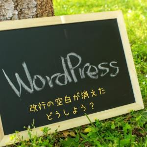 【WordPress+Cocoon】改行の空白が消える問題をCSS・プラグインを使わずに解決