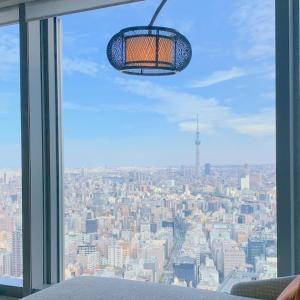 【宿泊記】マンダリンオリエンタル東京 / デラックスプレミアキング「粋なおもてなしが魅力!和テイストの静謐な空間で過ごすおこもりステイ」