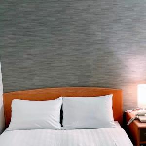 【宿泊記】ブライトパークホテル / シングルルームA「ひろめ市場近くの観光の拠点に便利なホテル」
