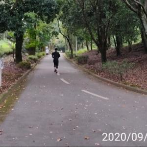 練習-おろしたてのテンポネクストで30㎞走った感想-2020/09/20