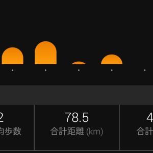 11月23日(月)~11月29日(日) 今シーズン初めてフルマラソンのレースに出た