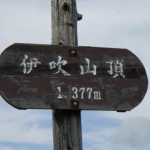 伊吹山ドライブウェイ&山頂まで軽登山 東登山道に注意です!