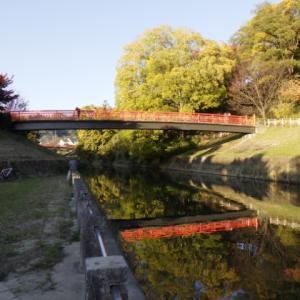 【ちはやふる】竜田公園・三室山で紅葉狩り 百人一首にも詠まれる絶景???