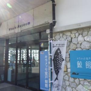 【古式捕鯨】キラメッセ室戸 鯨館を見学。C・W・ニコルが館長を務めた博物館