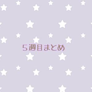 【ゆるっと補完食(5)】5週目まとめ