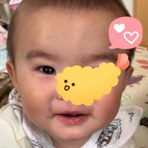 【7m5d】追記あり*生後7ヶ月とハイハインデビュー