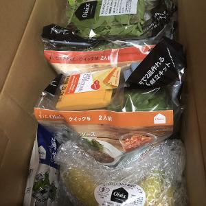 オイシックスデビューしました!初めての「食材宅配定期ボックス」注文した食材を紹介します