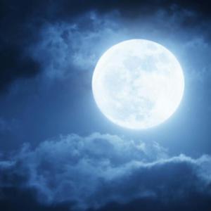 特集「月」(追)