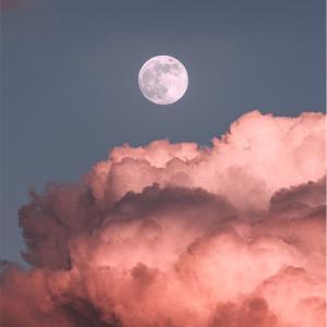 【ビーバームーン】満月のお話と喜びに沿って生きること