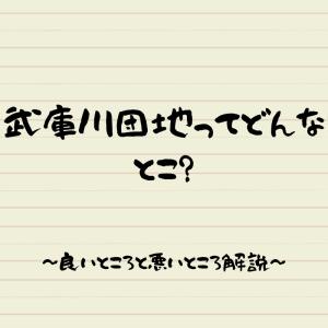 武庫川団地はこんな所【入居を考えている方】いい所・悪い所を解説