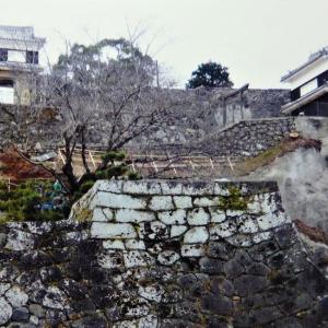 """<臼杵城>の""""櫓門""""を巡る"""