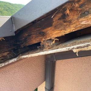 ベランダ屋根開放口の木材腐食    Balcony roof wood decayed