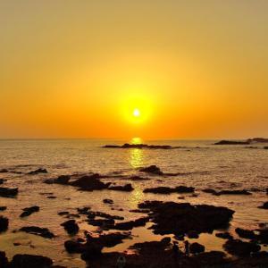 城ケ島公園(神奈川県)【ミシュラン・グリーンガイドジャポンで2つ星を獲得した海岸風景】