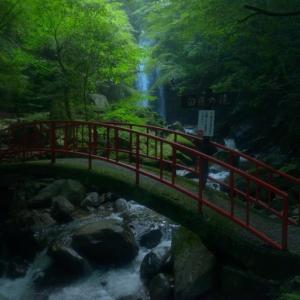 白藤滝 ~伊賀市を流れる白藤にたとえられる名瀑~