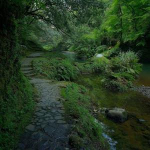 鶴仙渓 ~山中温泉にある古今の文人墨客を魅了した渓谷~
