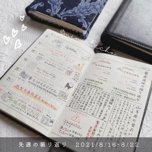 先週の振り返り( 2021/8/9-8/15)