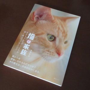 前回より詳しく紹介。猫ポエム写真集『猫は家族』。