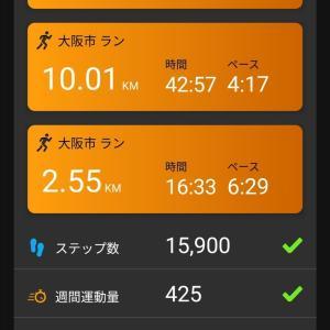 ペース走 10km 効率とスタミナの融合