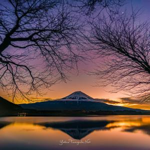 富士田貫湖からの日の出です。