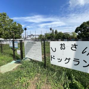 東京オリンピックも開催!品川区大井ふ頭中央海浜公園「しおさいドッグラン」情報