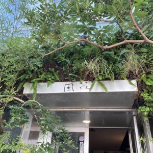 【表参道】緑×嵐の聖地『flower&cafe風花』とは一体どんなカフェ?