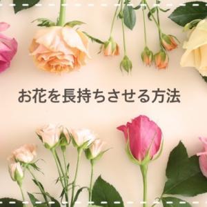 知っておきたい!『お花を長持ちさせる方法・コツ』をわかりやすく紹介します