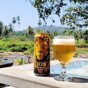 ゾウの水浴びを見れるピンナワラのレストランでLOINビールを飲む