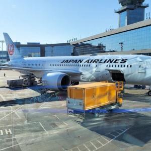 サンクトペテルブルクからモスクワ経由のJAL直行便に乗って帰国