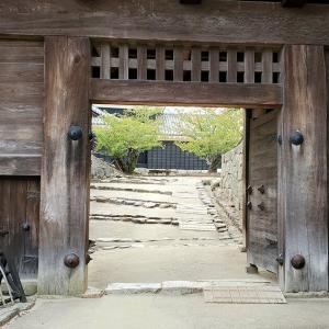 戸無門を抜けて筒井門を強行突破し、なんとか松山城本壇に到達【愛媛旅行記⑦】
