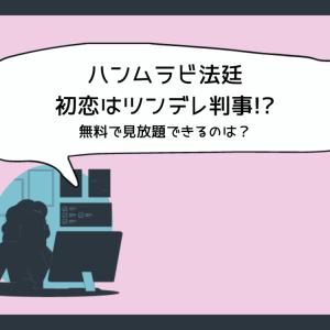『ハンムラビ法廷~初恋はツンデレ判事!?~』日本語字幕付き無料で見放題の動画配信サービス