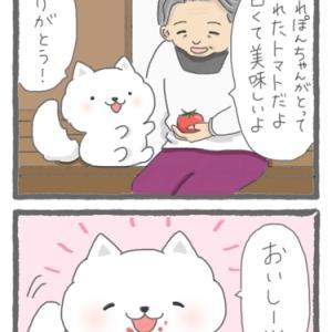 4コマ漫画「孫」