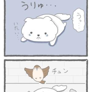 4コマ漫画「スズメさん」