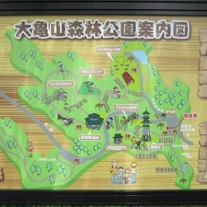 【宮城県】富谷市にある大亀山森林公園を紹介。アスレチックとそり遊びができてすごく楽しい公園です。