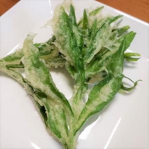 ハルジオンを天ぷらにして食べてみた!