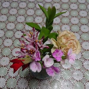 お花の定期便6