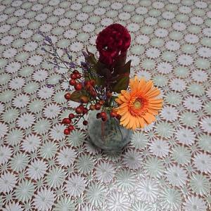 お花の定期便8