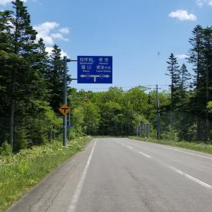 国道335号線